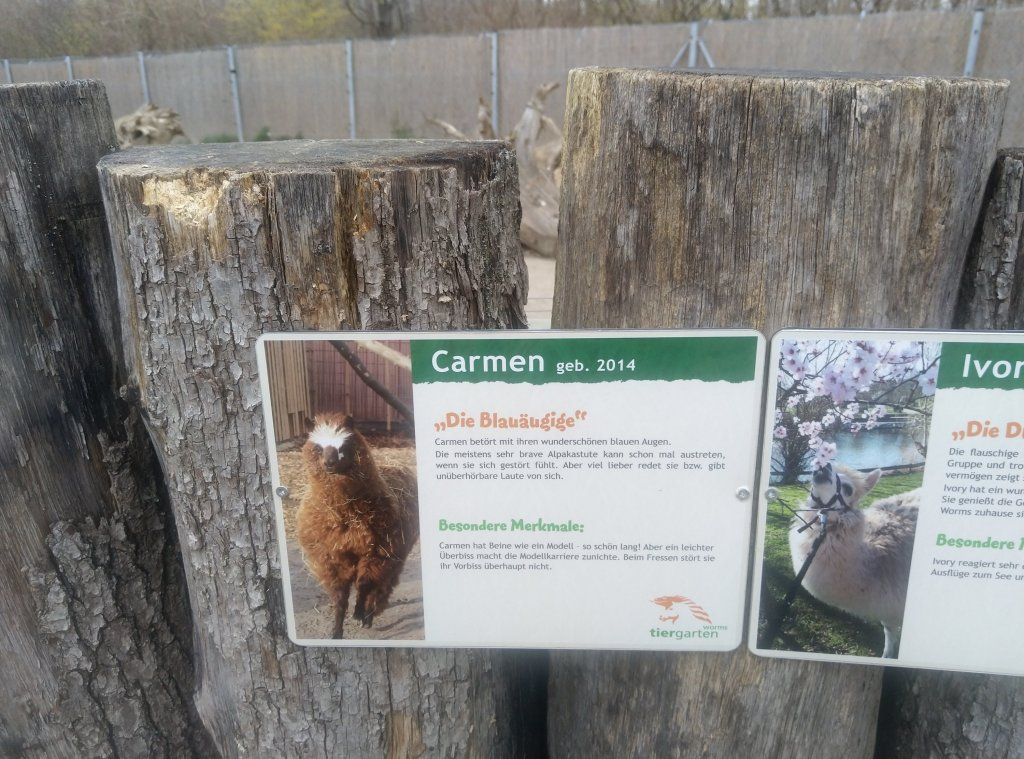 Tiergarten Worms Carmen